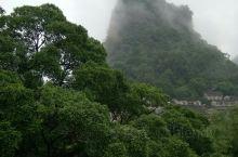 广西的黄姚古镇,镇子不大,很适合住一晚,早上起床推开窗能看到美好的风景,心情都开阔很多