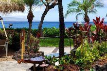来茂宜岛一定要去的商业化中心——拉海纳捕鲸镇  坐落于茂宜岛西部的拉海纳捕鲸镇,极目远眺远处的拉奈岛
