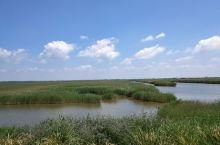 盘锦,红海滩与芦苇荡
