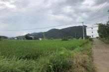 石城县大由乡田园风光