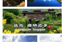 庆元廊桥,不但具有全国数量最多、历史最悠久、历史沿革最具连贯性的特点,而且全国现存寿命最长、单孔廊屋