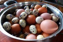 诏安小城的早餐店。绿豆爽很赞。 跟着《早餐中国》吃早餐。