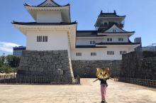 富山城,给张妹妹打个猫头,哈哈哈。