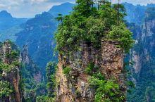 张家界空中田园看山