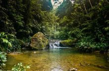 自然留给世界的宝贵财富——达连国家公园  自然遗产,奇妙景致 达连国家公园仿佛是个全新的世界,我到公