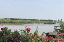 养蚝码头&红树林边上的蚝宴. 过了休渔期,心心念念的想去海边! 位置:阳西 程村 红木山饭店 记得春