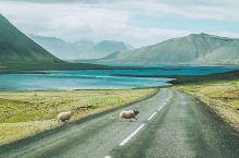 旅游冰岛,最适合、最推荐的旅行方式就是自驾旅行,自驾机动性强、时间分配弹性,所以租车成了我们这次旅行