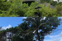 泰国·普吉岛 ——与龙哥的浪漫之旅 酒店:Mandarava Resort and Spa,Karo