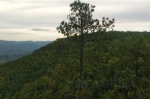 龙陵嵩山,碧绿清脆