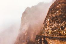 都说不识庐山真面目,只缘身在此山中……如今到了这云雾缭绕的白石山也依然如此,行走在雾气中,时不时被一