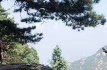 推荐指数:4星。  关于环境: 从山脚到山上开车40多分钟,九曲十八弯的山路,绕得我都耳鸣了!避暑胜