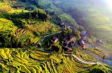 紫鹊界梯田,位于湖南省中部新化县的群山之中。紫鹊界这个名字充满诗情画意,令人神往。然而这个名字的来历