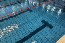 很多人游泳是为了健身 我们游泳是为了吃的安心