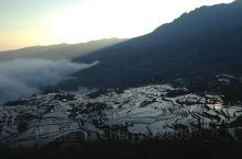 元阳梯田的清晨云海