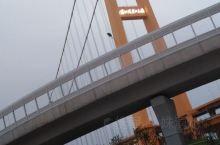 武汉市国庆节的大事情之一就是新修的杨泗港大桥在正式通车前对市民进行开放,七天假期,武汉市的市民扶老携