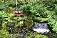 日本北海道旭川旅游必到源头的大雪旭岳源水打卡攻略 作为一名到亚洲日本北海道旭川旅游的普通游客,可以到