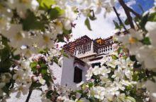 拉萨就是布达拉宫 布达拉宫就是拉萨 没有误会 此乃正解! 达赖喇嘛仓央嘉措诗中说 住在布达拉宫 我是