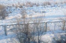 西伯利亚已经白雪皑皑了