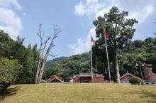 """灵光寺旅游区,融朝拜观光、美食住宿、森林探险、禅茶体验于一体,主要景点有广东四大千年古刹""""灵光寺""""。"""