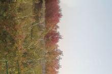 秋季是收获美景的日子
