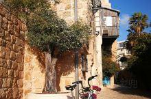 位于地中海边的雅法老城