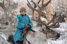 小众旅行地推荐——去蒙古国骑驯鹿 这里没有滴滴,没有摩拜,驯鹿是这里唯一的交通工具。  地球上最后一