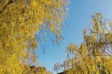 秋日小园漫步取景