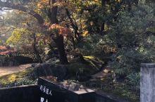 """【足立美术馆】 """"足立美术馆""""位于日本岛根县安来市,由实业家足立全康于1970年建立,是以近代日本画"""