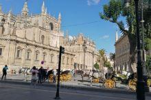 西班牙塞维利亚大教堂,位于安达卢西亚大区首府塞维利亚中心。教堂属于哥特式建筑,颜值极高