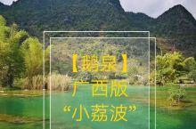 """【靖西鹅泉】广西版""""小荔波""""  在广西百色靖西,有这么一个地方,泉水长年不息,积流成潭,清澈见底,媲"""