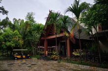 西双版纳洲际度假酒店 满满的负氧离子,环境好到宛若仙境