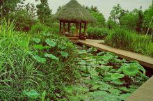 随州—白云湖湿地公园