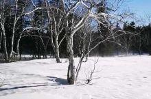 12月已经冰封的老里克湖 穿越雪地路线,一定要给自己保暖。带上护膝,多走路全身会发热。 全程穿越不做