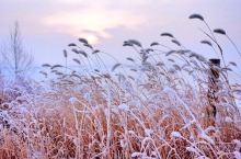 哈尔滨~雪谷~雪乡旅游攻略 千里冰封,万里雪飘,雪季的东北吸引着无数小伙伴对雪的向往,下面给大家去看