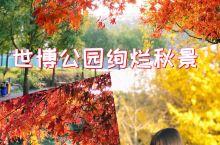 世博公园深秋美景