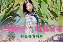 上海周边隐藏在水乡明星都青睐的精品民宿  厌倦了商业气息很浓的古镇水乡,这次住进了一家小众古镇旁的水