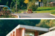 新县大别山露营公园,一个充满鸟语花香的地方,寂静又美好! 大别山露营公园