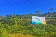 【绿雪芽山庄】绿雪芽山庄位于福建宁德太姥山,与奇峰异石的太姥山风景区遥遥相望。绿雪芽山庄极具福鼎民俗