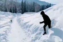 喀纳斯跳雪有约的吗?
