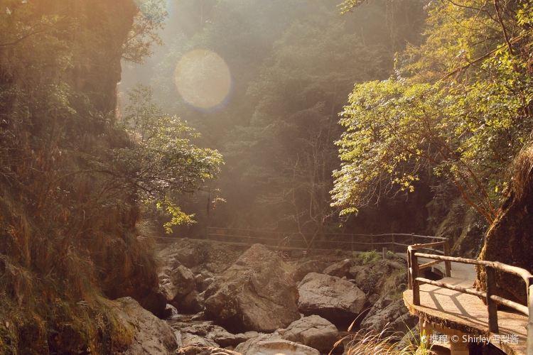 Niutoushan National Forest Park4