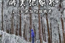 冬季张家界|极美雾凇  张家界国家森林公园位于湖南省西北部张家界市,主要景点有十里画廊、天子山、袁家