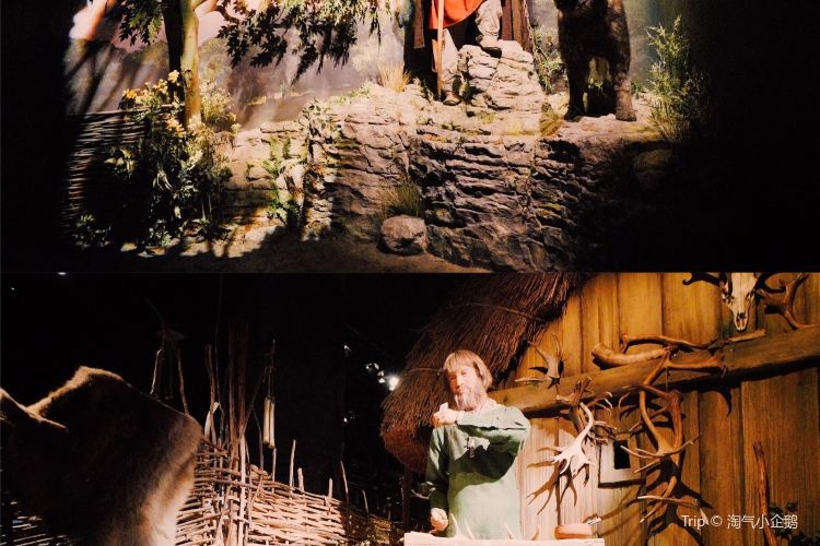 Jorvik Viking Centre3