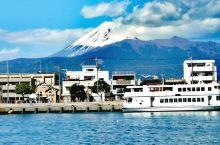 日本伊豆沼津鱼港!出名的樱花虾,红色的雕鱼,一边吃海鲜一边可以看富士山,美景美色同亨,就是今年的旅游
