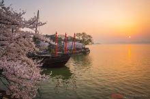 江南好,风景旧曾谙。日出江花红胜火,春来江水绿如蓝。能不忆江南?三月的江南,春意盎然,百花争艳。梅花