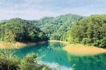 美丽的千岛湖,住在中心湖区某岛上,景色太美了!一早四点多起床,骑着自行车在安静的自行车道上穿行。一道