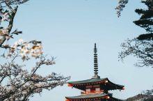 比肩迪拜哈利法塔!打卡东京晴空塔 世界第二的高塔!最高的自立式电波塔!为了解决高楼耸立电波传输困难,