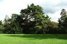 国际音乐节举办地,皇家维多利亚公园,全巴斯最大的公园!  【公园印象】 来到这里给我的最直观印象,就