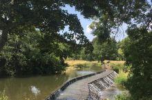 宛如田园风光的清澈河流,自带梦幻滤镜    这是我最喜欢的河流,它特别的碧蓝清澈。不是,我很喜欢在这