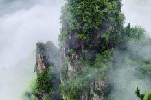 再补充一些南尖岩的图片。 第一天下午在山路十八弯中到了山顶住下,小雨淅淅沥沥,满山竹海。民宿窗外就是