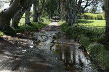 黑暗树篱位于北爱尔兰的一个小村落附近,这条树木隧道是斯图亚特家族在十八世纪八十年代自家的别墅旁边的大